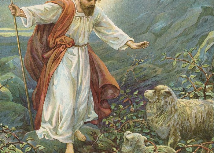 Bible Stories; Biblical; Jesus Christ; The Tender Shepherd; Sheep; Rescue Greeting Card featuring the painting Jesus Christ The Tender Shepherd by Ambrose Dudley