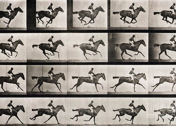 Muybridge Greeting Card featuring the photograph Jockey On A Galloping Horse by Eadweard Muybridge