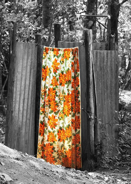Costa Rica Greeting Card featuring the photograph Jungle Shower by RC Photography
