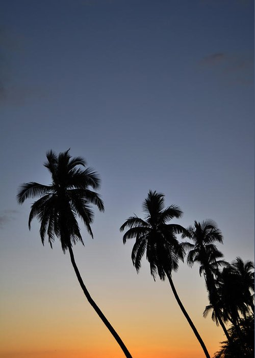 Lahaina Sunset Maui Hawaii Palm Trees Sun Beach Greeting Card featuring the photograph Lahaina Sunset by Kelly Wade