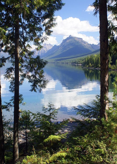 Glacier National Park Greeting Card featuring the photograph Lake Mcdlonald Through The Trees Glacier National Park by Marty Koch