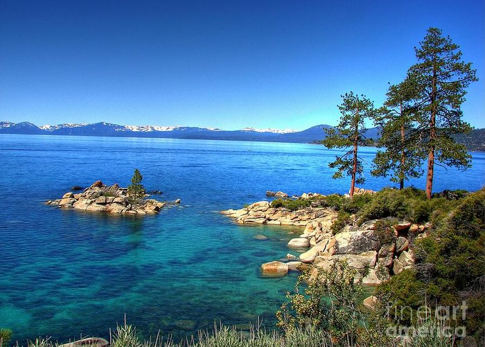 Lake Tahoe State Park Greeting Card featuring the photograph Lake Tahoe State Park Nevada by Scott McGuire