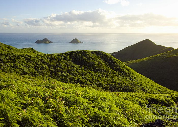 Blue Greeting Card featuring the photograph Lanikai Hills by Dana Edmunds - Printscapes
