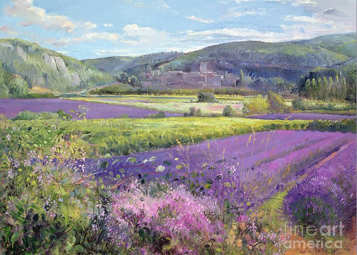 Field; South Of France; French Landscape; Hills; Hill; Landscape; Flower; Flowers; Field; Tree; Trees; Bush; Bushes; France; Provence Greeting Card featuring the painting Lavender Fields In Old Provence by Timothy Easton
