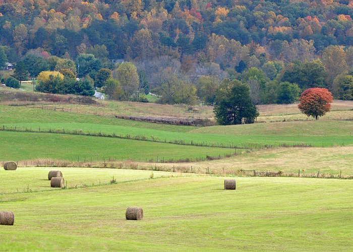 Landscapes Greeting Card featuring the photograph Layers Of Fields by Jan Amiss Photography