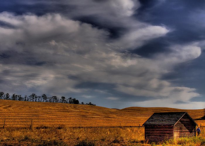 Landscape Greeting Card featuring the photograph Leaving The Shed by David Patterson
