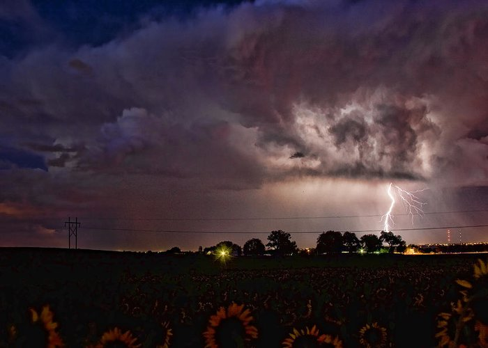 Sunflowers; Fields; Lightning; Lightening; Chasers; Lightning Poster; Lightning Photography; Lightning Gallery; Picture Of Lightning; Lightning Storm Pictures; Lightning Photos Colorado; Pictures Of Storm Clouds And Lightning; Lightning Art; Lightnen Greeting Card featuring the photograph Lightning Stormy Weather Of Sunflowers by James BO Insogna