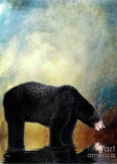Bear Greeting Card featuring the photograph Little Boy Lost by Lois Bryan