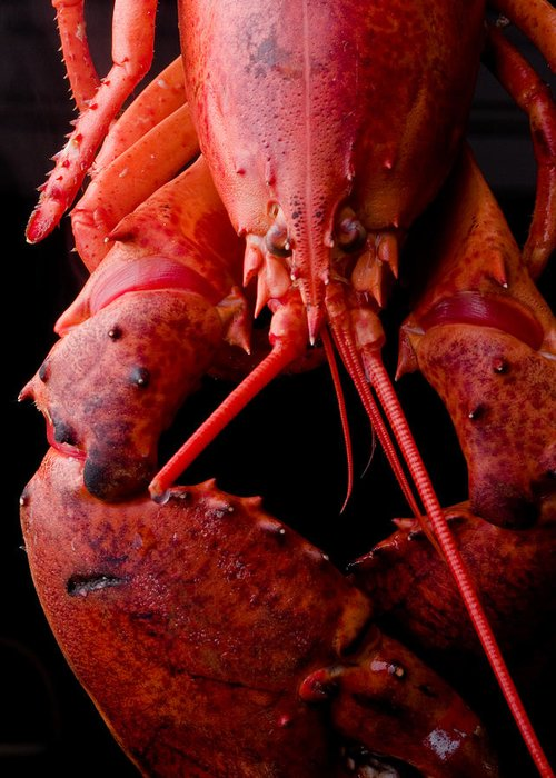 Italy Greeting Card featuring the photograph Lobster by Jim DeLillo