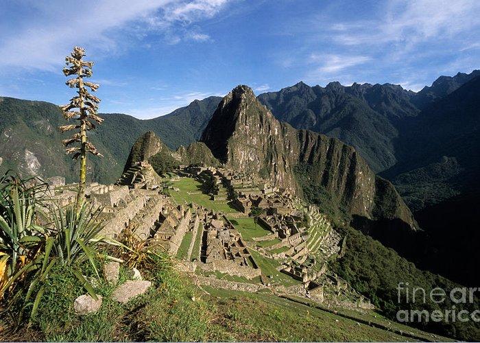 Machu Picchu Greeting Card featuring the photograph Machu Picchu And Bromeliad by James Brunker