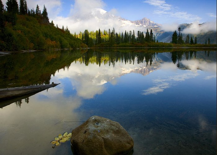 Mt. Rainier Greeting Card featuring the photograph Majesty Revealed by Mike Dawson