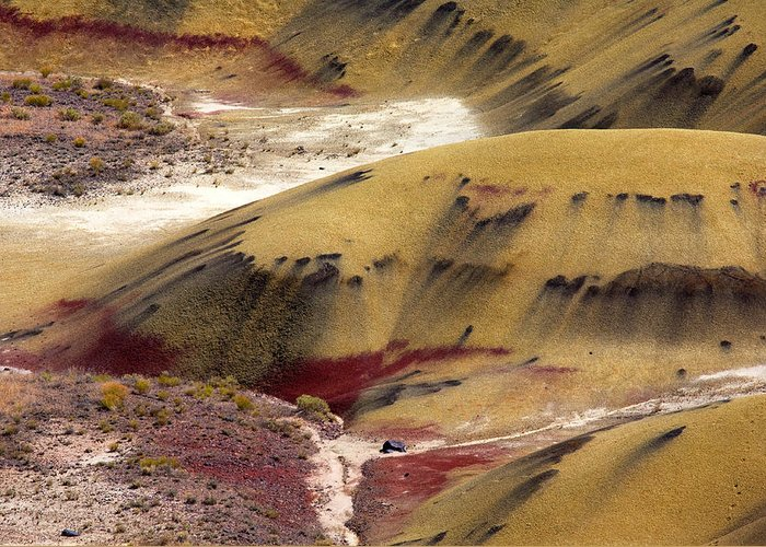 The Strange Stains And Markings On The Painted Hills National Monument In Oregon Greeting Card featuring the photograph Marked Hills by Mike Dawson