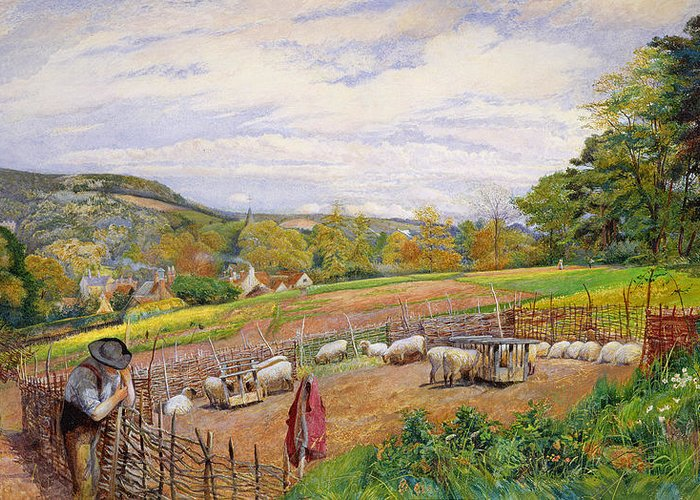 Mending Greeting Card featuring the painting Mending The Sheep Pen by William Henry Millais