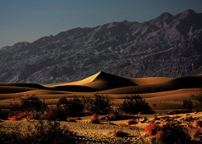 Death Valley National Park Greeting Card featuring the photograph Mesquite Flat Sand Dunes Death Valley - Spectacularly Abstract by Christine Till