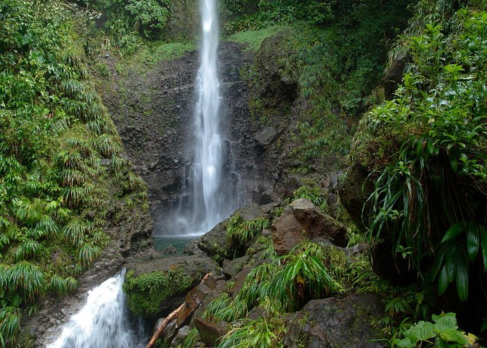 Island Greeting Card featuring the photograph Middleham Waterfall In Dominica by Tropical Ties Dominica