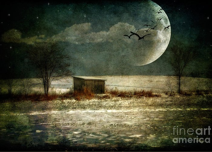 Moon Greeting Card featuring the photograph Moonstruck by Lois Bryan