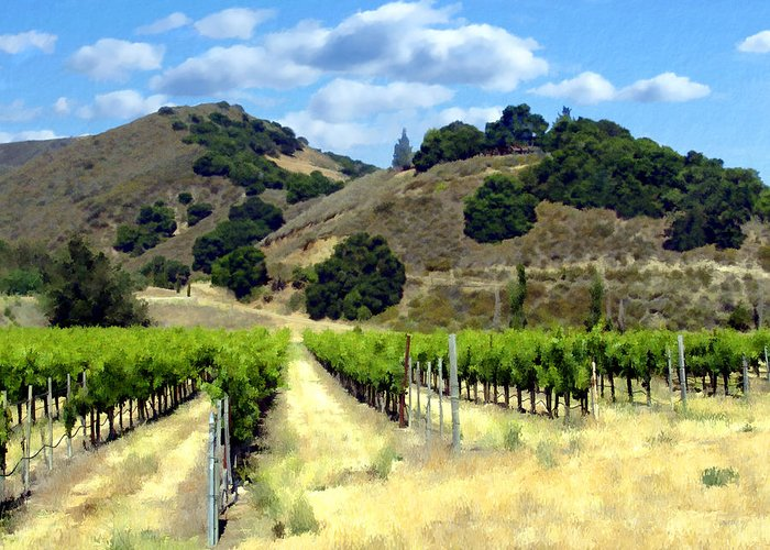 Vineyards Greeting Card featuring the photograph Morning At Mosby Vineyards by Kurt Van Wagner