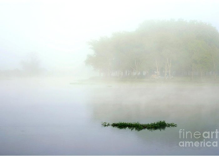 Landscape Greeting Card featuring the photograph Morning On The Parana by Balanced Art