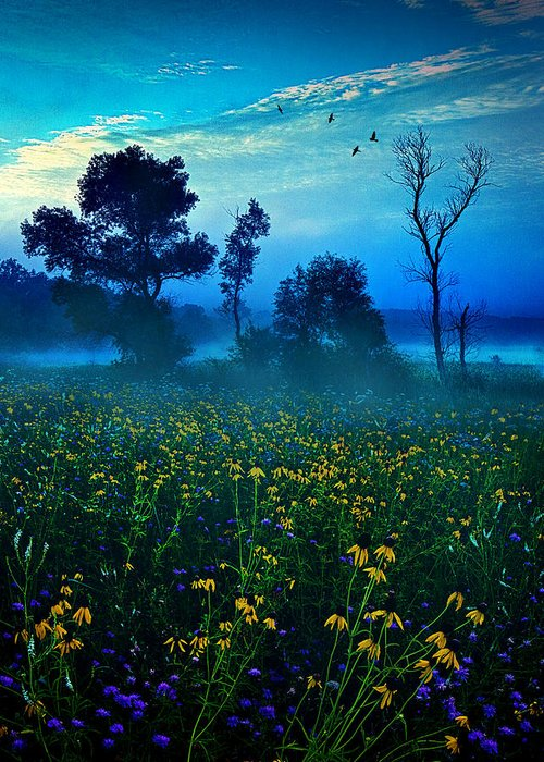 Horizons Greeting Card featuring the photograph Morning Song by Phil Koch