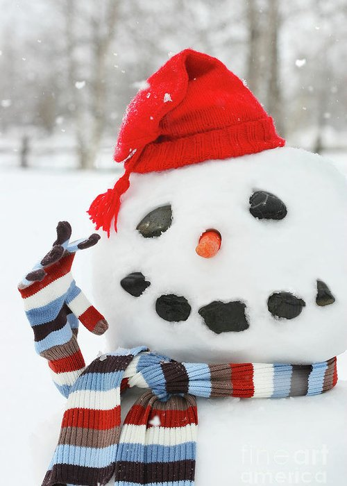 Background Greeting Card featuring the photograph Mr. Snowman by Sandra Cunningham