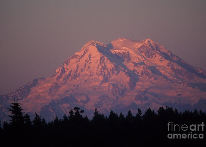 Glaicier Greeting Card featuring the photograph Mt. Rainier Washington by Robert Torkomian