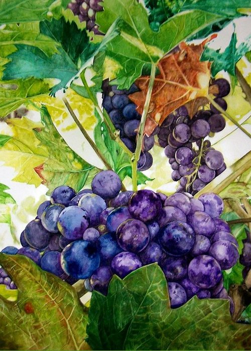 Grapes Greeting Card featuring the painting Napa Harvest by Lance Gebhardt