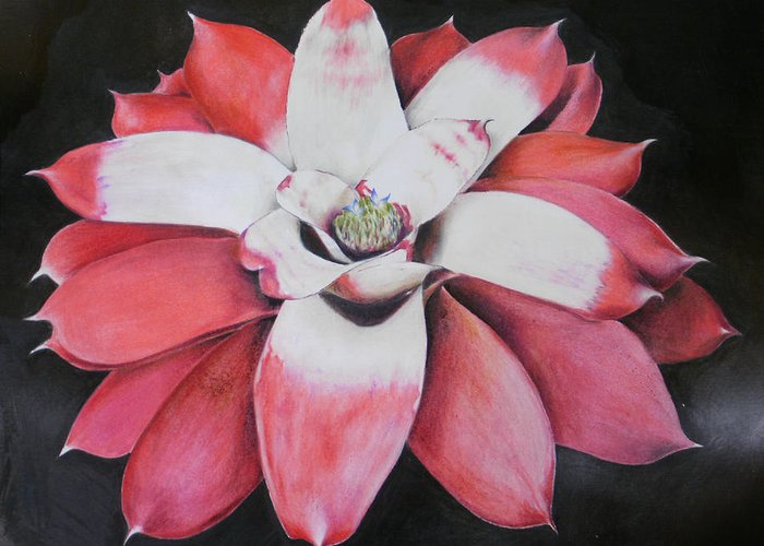 Neoregelia Greeting Card featuring the painting Neoregelia Madam President by Penrith Goff