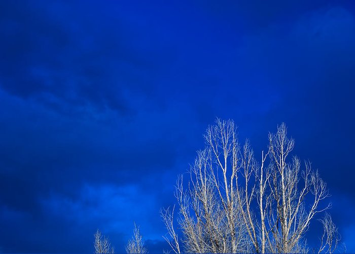 Night Greeting Card featuring the photograph Night Sky by Steve Gadomski