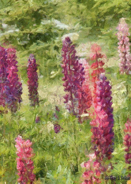 Nova Scotia Greeting Card featuring the painting Nova Scotia Lupine Flowers by Jeff Kolker