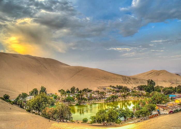 Huacachina Greeting Card featuring the photograph Oasis by Dado Molina