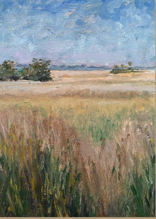 Landscape Greeting Card featuring the painting Ochlockonee Marsh by Pam Talley