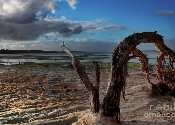 Landscape Greeting Card featuring the photograph Ode To The Estuary by Kym Clarke