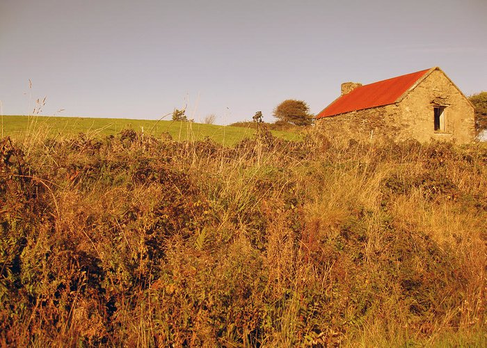 Ireland Greeting Card featuring the photograph Old Irish Shed by John Quinn