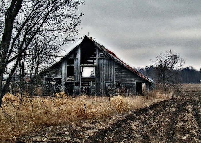 Barn Greeting Card featuring the photograph Old Shed Left By Itself by Laurie With