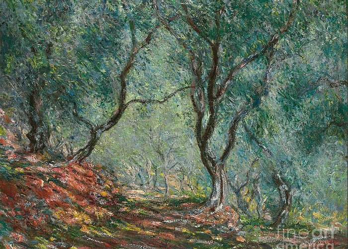 Bordighera; Italian; Landscape; Olive Grove; Path; Impressionist; French Greeting Card featuring the painting Olive Trees In The Moreno Garden by Claude Monet