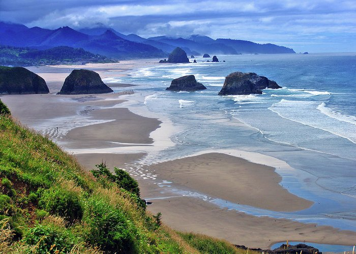 Oregon Greeting Card featuring the photograph Oregon Coast by Scott Mahon
