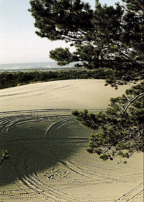 Oregon Dunes National Recreation Area Greeting Card featuring the photograph Oregon Dunes 3 by Eike Kistenmacher