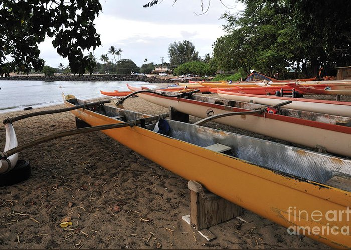 Outrigger Canoe Greeting Card featuring the photograph Outrigger Canoes by Andy Smy