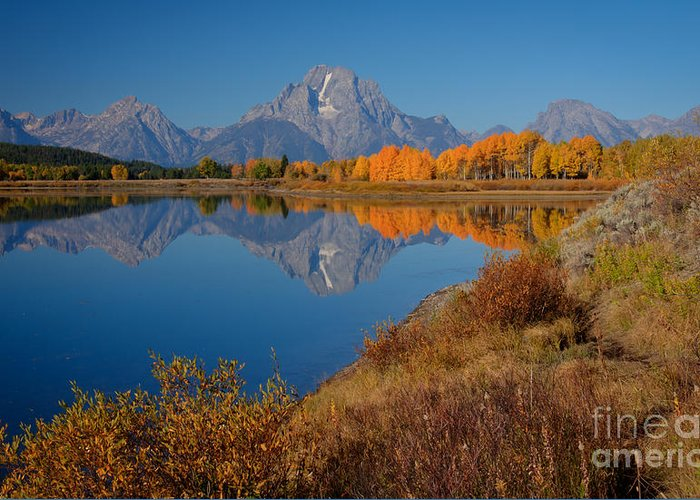 Idaho Scenic Greeting Card featuring the photograph Oxbow Bend by Idaho Scenic Images Linda Lantzy