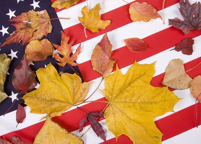 Usa Greeting Card featuring the photograph Patriotic Autumn Colors by James BO Insogna