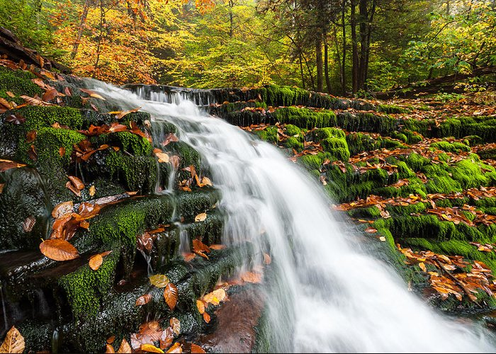 Allegheny Mountains Greeting Card featuring the photograph Pennsylvania Autumn Ricketts Glen State Park Waterfall by Mark VanDyke