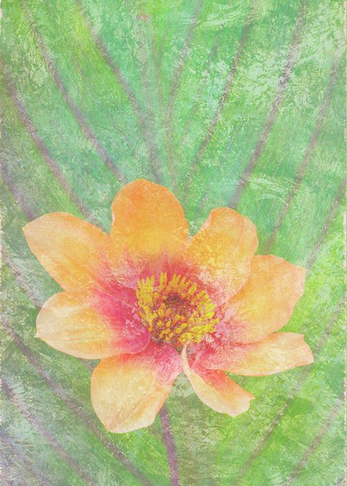 Butterfly Greeting Card featuring the painting Perfect Peach by JQ Licensing