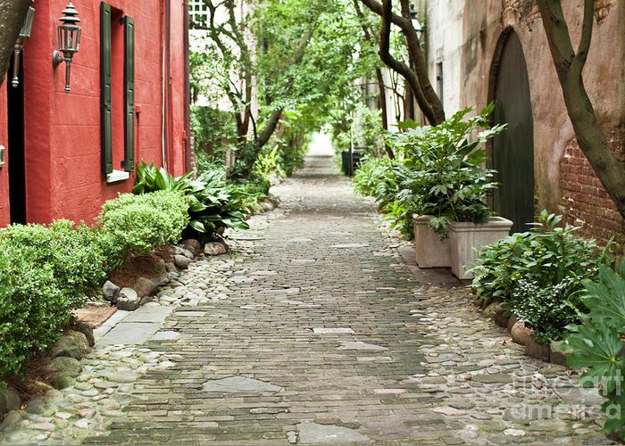 Philadelphia Alley Greeting Card featuring the photograph Philadelphia Alley Charleston Pathway by Dustin K Ryan