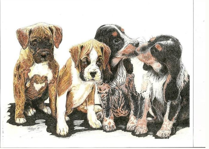 Puppies Greeting Card featuring the drawing Pick Of The Litter by Bill Hubbard