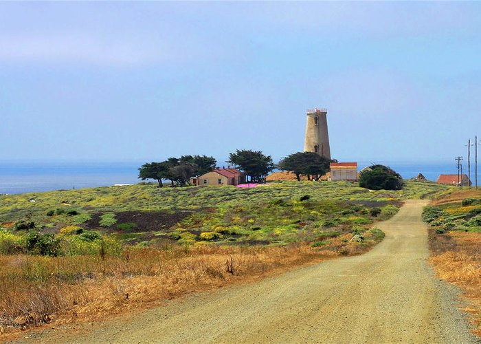Piedras Blancas Light Station Greeting Card featuring the photograph Piedras Blancas Historic Light Station - Outstanding Natural Area Central California by Christine Till