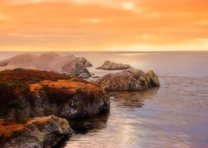 Point Lobos Greeting Card featuring the photograph Point Lobos by Utah Images