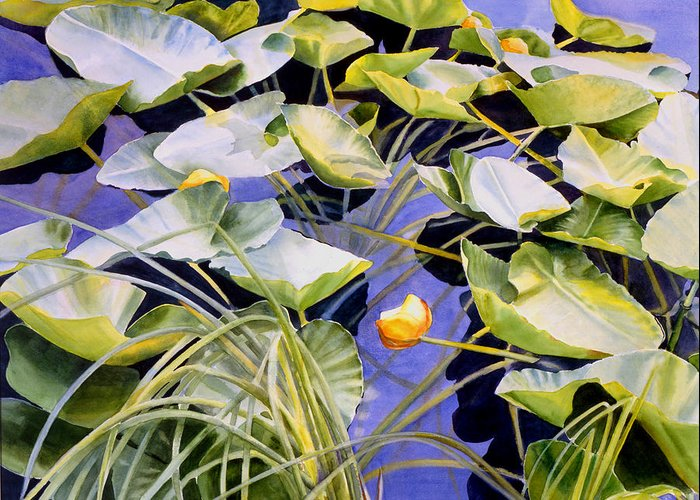 Pond Greeting Card featuring the painting Pond Lilies by Sharon Freeman