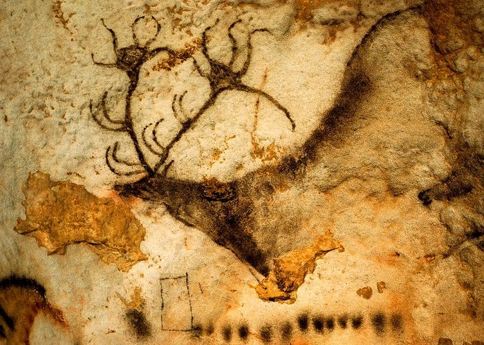 Red Deer Greeting Card featuring the photograph Prehistoric Artists Painted A Red Deer by Sisse Brimberg
