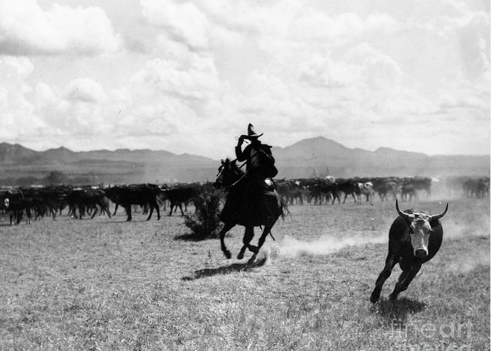 Raguero Cutting Out A Cow From The Herd (b/w Photo)wild West; Stetson; Cattle; Gallop; Round-up; Cowboy; Herding; Cattle; Plains; Old West; Western; Horse; Horseback; Rider; Riding; American Landscape; Atmospheric; Rustler Greeting Card featuring the photograph Raguero Cutting Out A Cow From The Herd by Raguero cutting out a cow from the herd