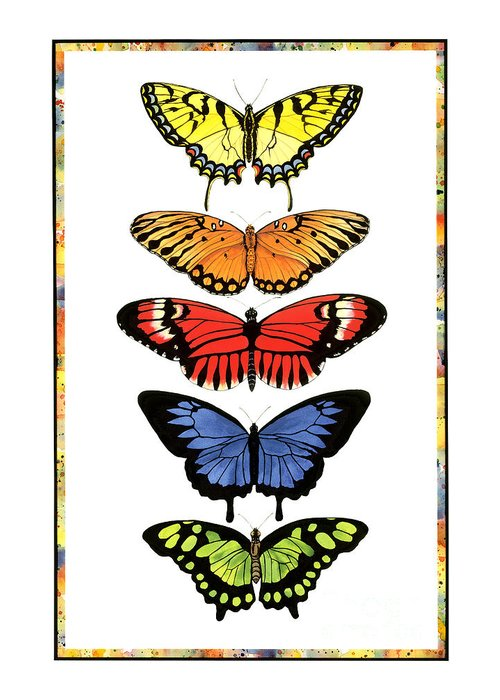 Butterflies Greeting Card featuring the painting Rainbow Butterflies by Lucy Arnold